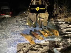 Fuchsjagd mit Hikmicro LH 25