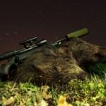 Nachtsicht Mono mit erlegten Sauen